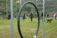 Giornate di pratica o boot camp