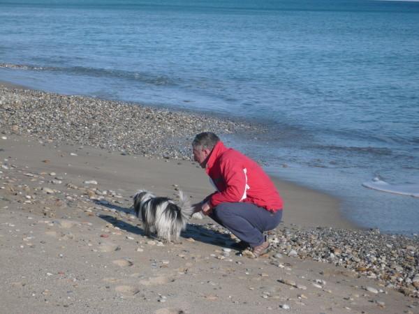 Un cane educato è un cane felice e noi con lui