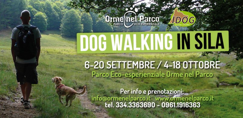 Dog Walking d'autunno