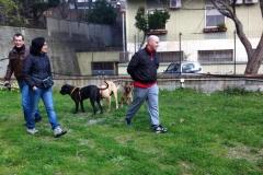 EVENTO CLASSE DI SOCIALIZZAZIONE 2014 3