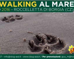 Dog Walking al mare